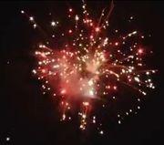Pyrotrade fireworks Glitter Spectacle - Feuerwerk kaufen Geburtstag Hochzeit Silvester