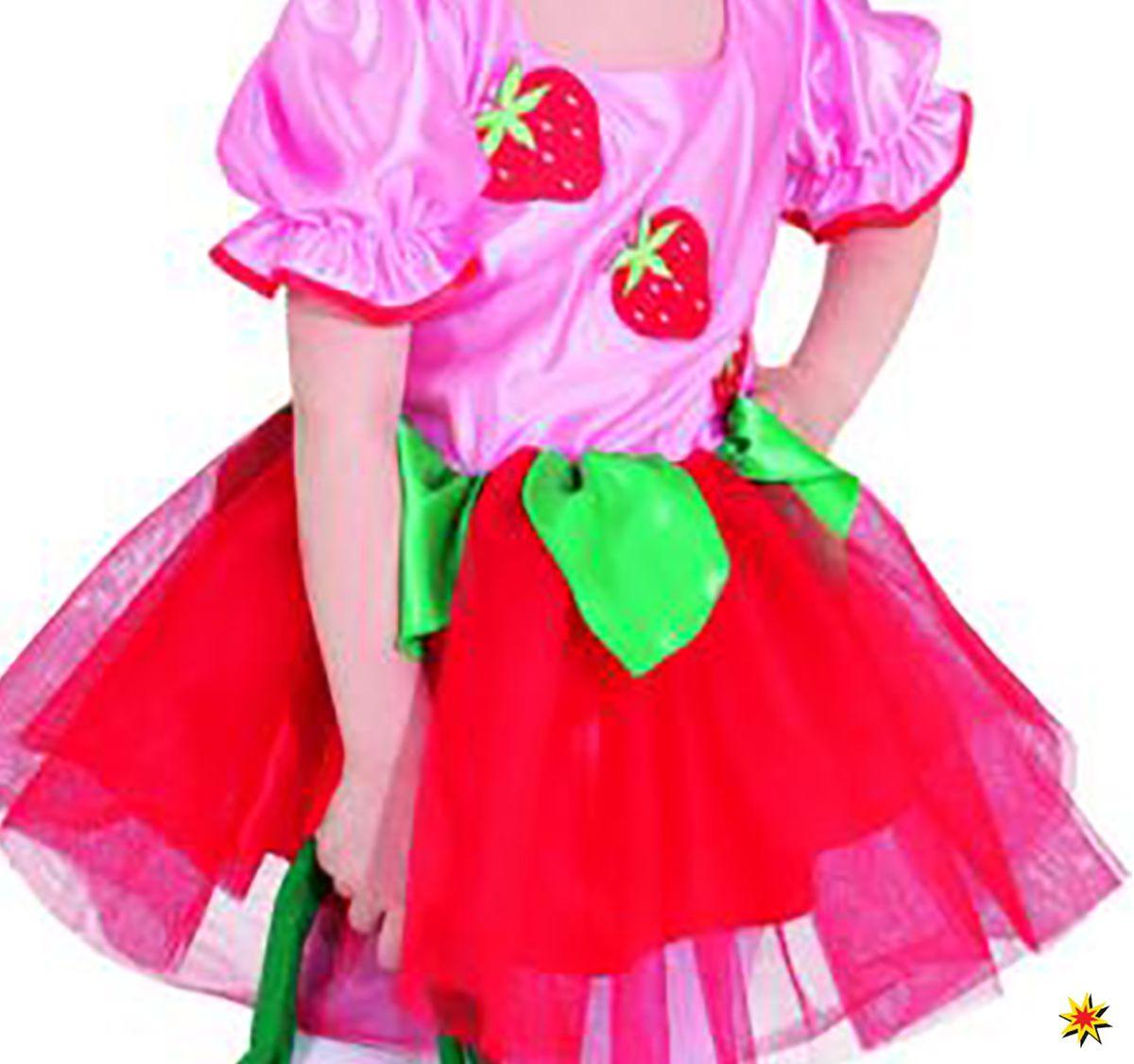 Kinderkostum Erdbeermadchen Kleid Erdbeer Fee