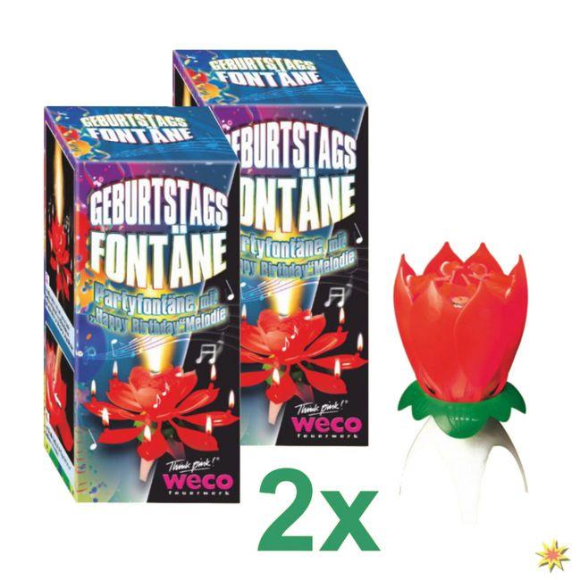 Geburtstagsfontänen mit Musik Blume Torten Fontäne Feuerwerk kaufen